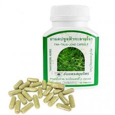 ФА ТАЛАЙ ДЖОН капсулы от простуды и гриппа вместо антибиотиков Thanyaporn Herbs Fah Talai Jone Capsule, 100 кап.