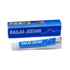 Кайлас Дживан аюрведический крем-бальзам от ожогов и воспалений (Kailas Jeevan)