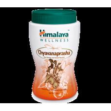 Чаванпраш Гималая — сильный иммуномодулятор( Himalaya Chyavanaprasha ), 500 гр.