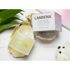 Восстанавливающий крем для лица на основе улиточного секрета lanbena snail repair, 30 мл
